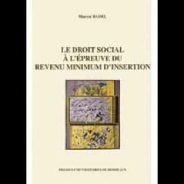 Droit social à l'épreuve du revenu minimum d'insertion (Le)