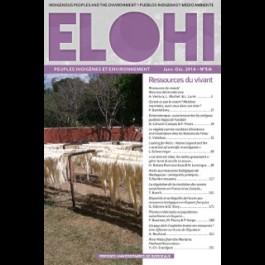 Plantes médicinales et populations autochtones en Guyane : perception chamanique, législation et gouvernance de la biodiversité - Article10