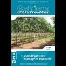 Dynamiques des campagnes tropicales n°249